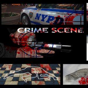 il corso online di criminologia tratta la scena del crimine e il rinvenimento delle prove