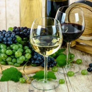 conoscere le tecniche di degustazione e di produzione e conservazione del vino, di coltivazione della vite